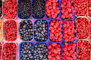 The EU helps Ukrainian berry companies enter the new markets
