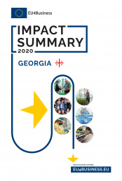 Citizens' Summary 2020: Georgia